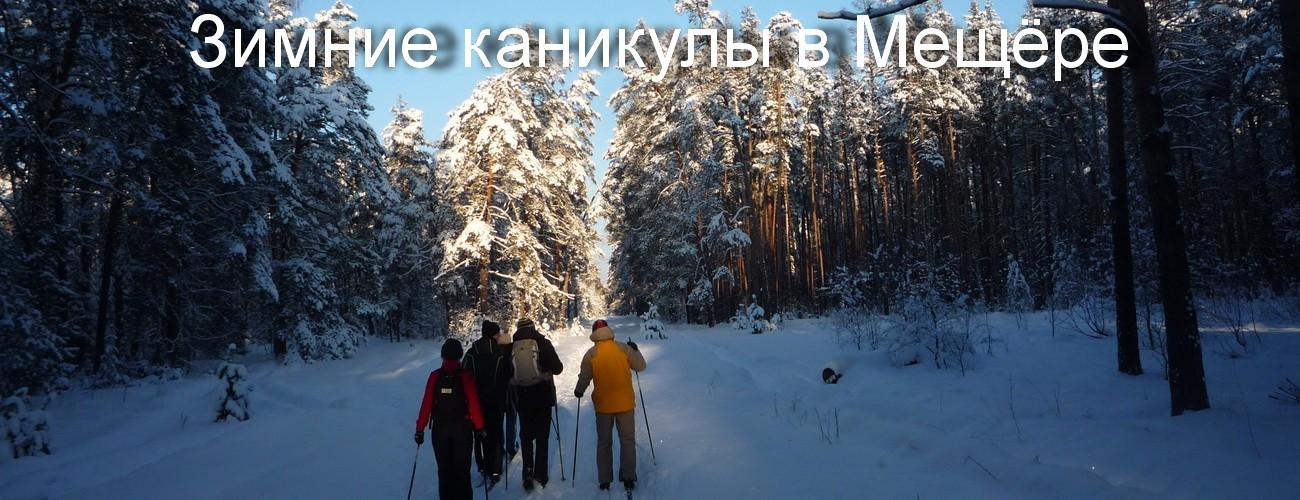 Лыжные походы по Мещере